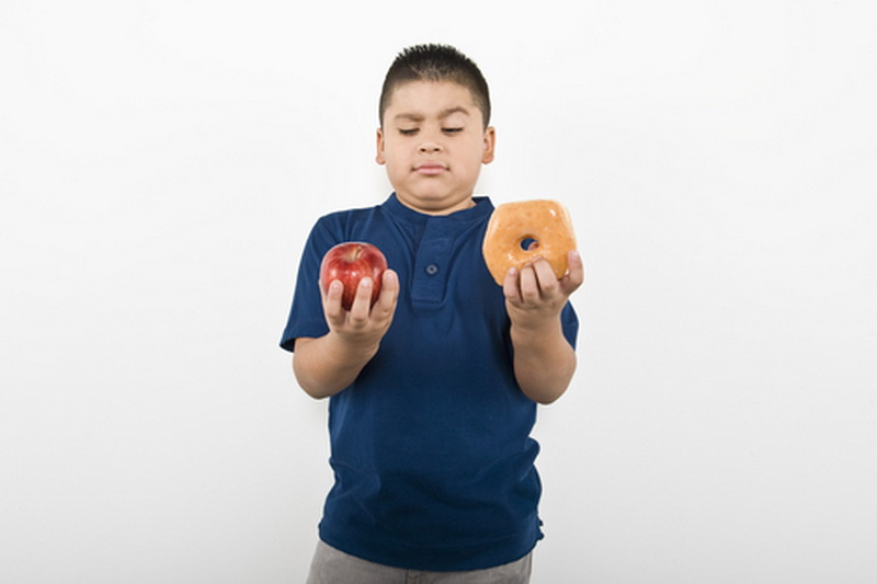 an analysis of the school meals connection with obesity in children in the united states