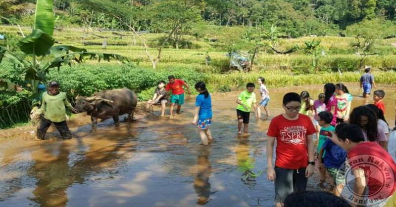 https: img.okezone.com content 2016 07 18 406 1440404 kembali-ke-alam-jadi-wisata-menarik-untuk-anak-perkotaan-9bqTIQ9rRK.jpg