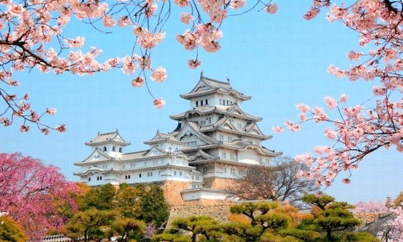 Beasiswa Full ke Jepang, Mau?