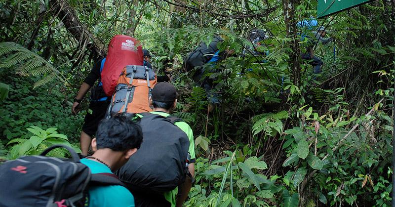 https: img.okezone.com content 2016 08 07 340 1457271 enam-pencari-orang-hilang-nyasar-di-hutan-E1FaDHjbUM.jpg