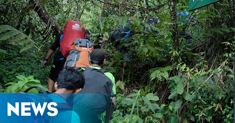 Enam Pencari Orang Hilang Nyasar di Hutan
