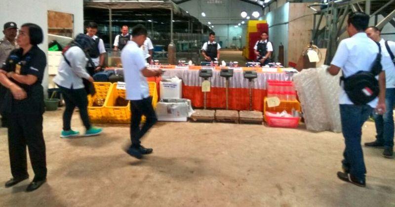 Polda Metro Gerebek Gudang Lobster Ilegal Beromzet Rp12 Miliar