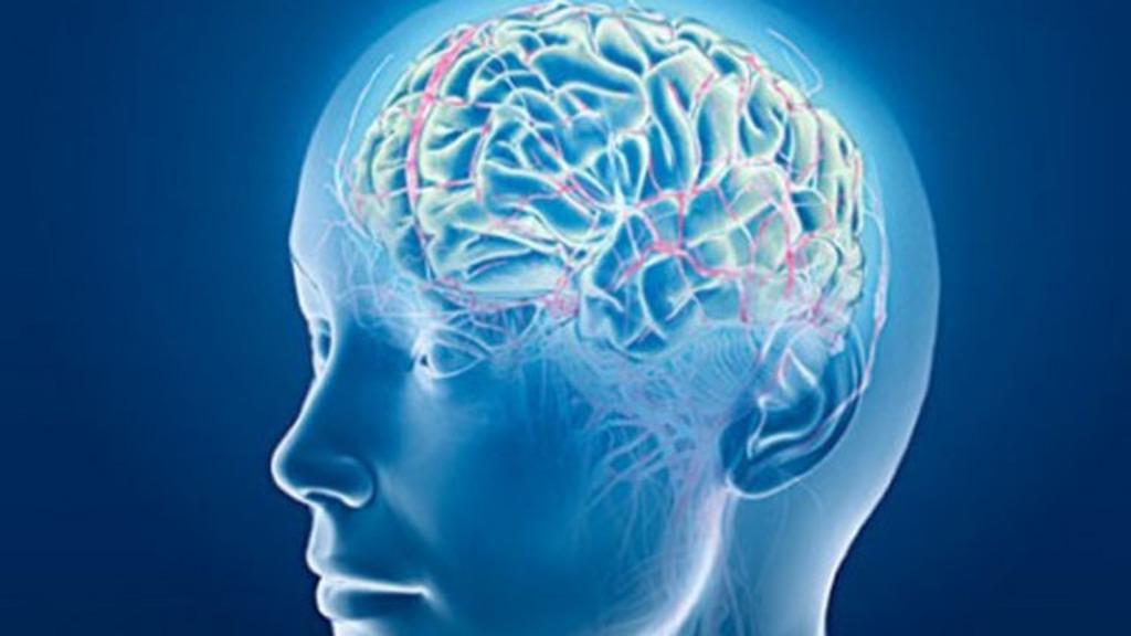 Begini Cara Narkotika Merusak Otak Manusia : Okezone News