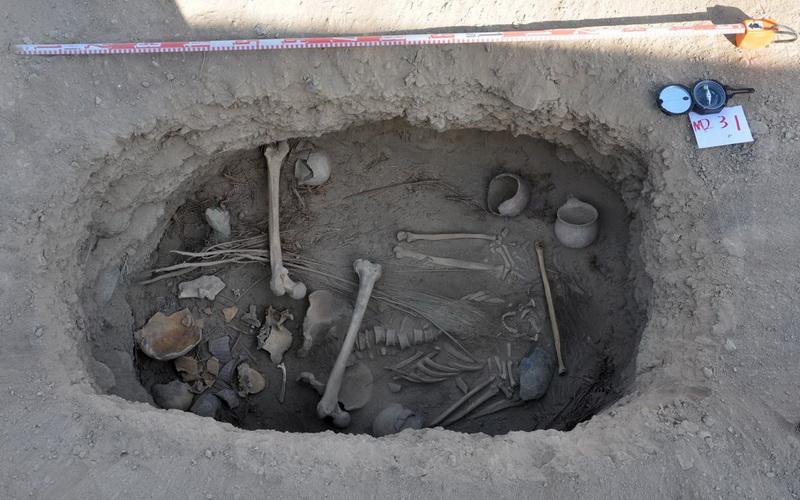 https: img.okezone.com content 2016 10 05 406 1506731 arkeolog-china-temukan-daun-ganja-terkubur-bersama-fosil-B43iTVb052.jpg
