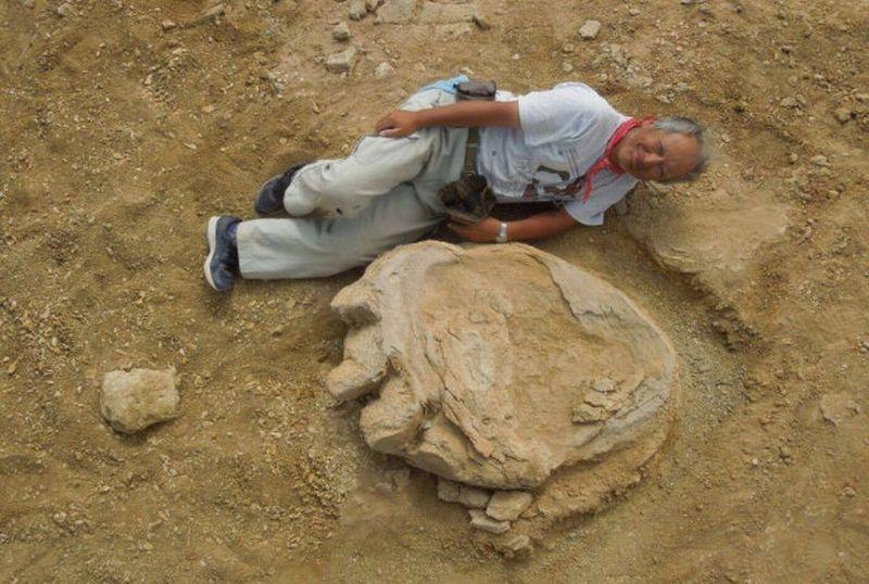 https: img.okezone.com content 2016 10 06 406 1508068 jejak-kaki-dinosaurus-ditemukan-di-mongolia-OiyWtXts1b.jpg
