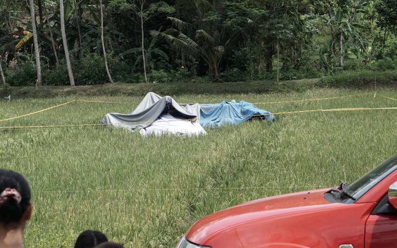 Bangkai pesawat latih yang jatuh di persawahan di Cilacap (Foto: Antara)