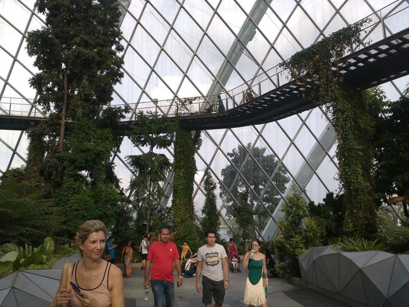 https: img.okezone.com content 2016 11 22 406 1547845 wisata-avatar-di-singapura-serunya-menikmati-alam-di-tengah-perkotaan-uY6ClywGzc.jpg