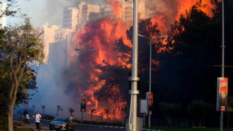 Kebakaran hutan di Haifa, Israel. (Foto: AP)
