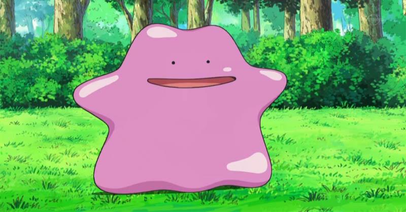 Ditto Menyamar sebagai Pokemon Lain saat Ditangkap