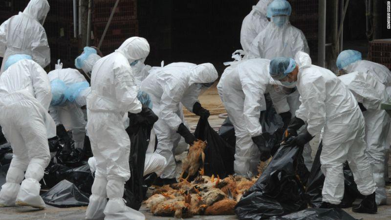 https: img.okezone.com content 2016 12 22 18 1573755 otoritas-china-sebut-ada-warganya-yang-terjangkit-flu-burung-HUrmaskyhS.jpg