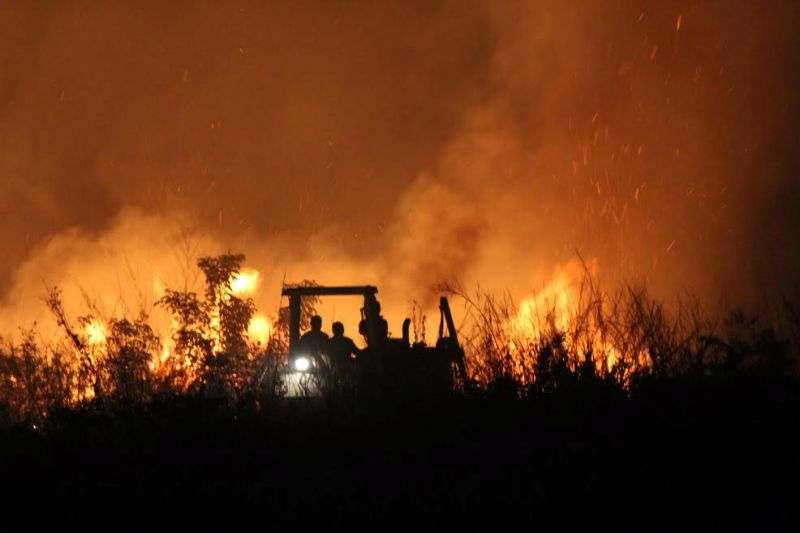 Prajurit TNI turut membantu memadamkan kebakaran hutan di Afrika Tengah. (Foto: Ist)