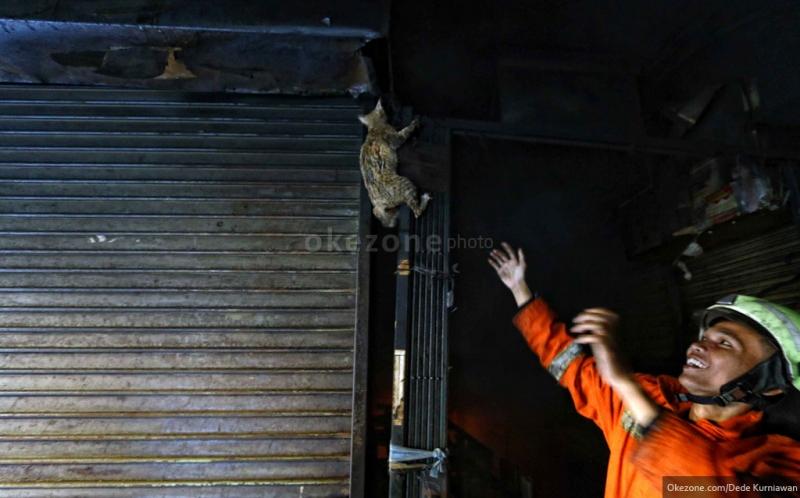 Pedagang Pasar Senen: Giliran Telat Bayar, Toko Disegel!