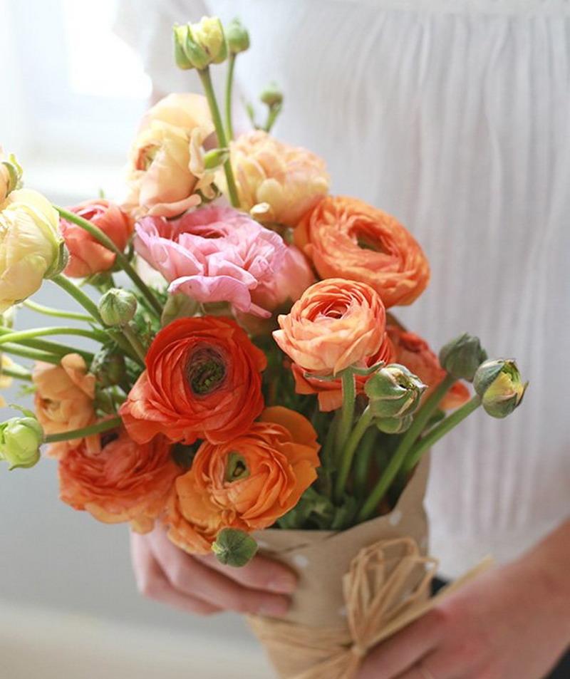 Bunga Mawar Sudah Kuno Ini Bunga Cantik Lainnya Bisa Diberikan Saat Valentine Okezone Lifestyle