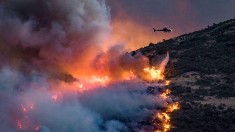 Petugas berupaya memadamkan kebakaran hutan di Christchurch, Selandia Baru. (Foto: Reuters)