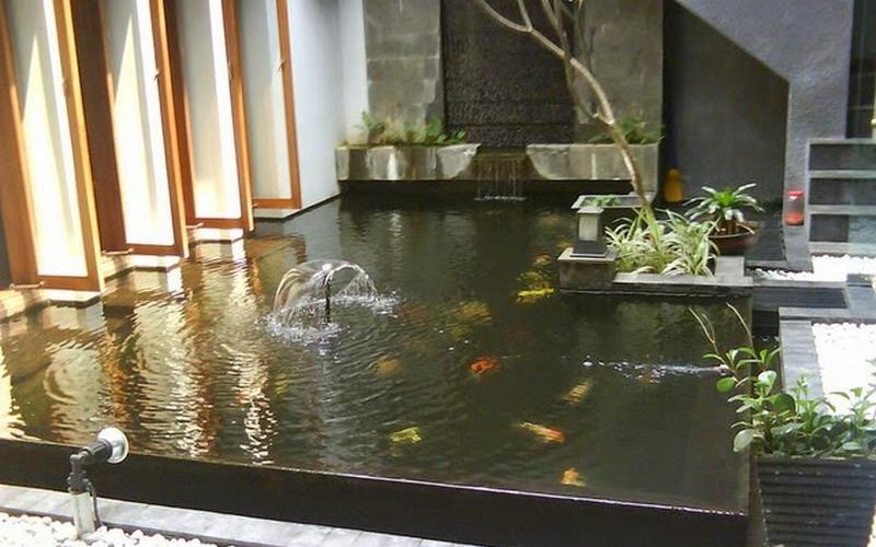 berencana membuat kolam ikan minimalis siapkan