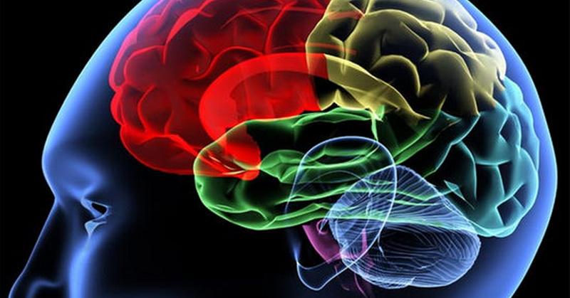 Sains Jelaskan Manfaat Sujud untuk Kesehatan Otak