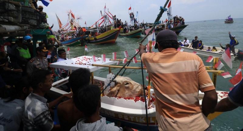 Mengintip Tradisi 'Petik Laut' dengan Sesaji Kepala Sapi di Laut Pasuruan