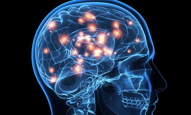 Otak Memiliki Kekuatan 100 Kali Lebih Besar dari Daya Komputasi