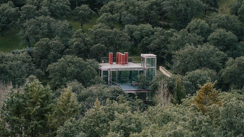 Rumah Kaca Dikelilingi Hutan Tawarkan Kesejukan di Tengah Kebisingan