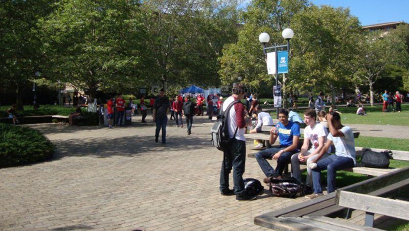 Kuliah di Amerika, Tugas Paper hingga Rebutan Kursi Perpustakaan