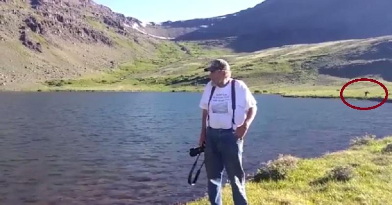 Heboh, Makhluk Diduga Bigfoot Terekam Kamera di Oregon
