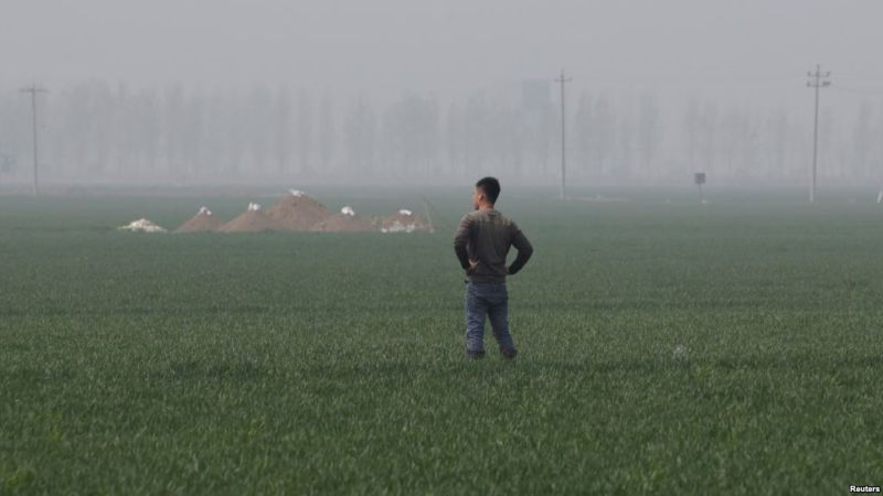 Pria berdiri di kawasan barat daya Beijing yang akan disulap Presiden Xi Jinping menjadi zona ekonomi modern dan berteknologi tinggi. (Foto: Reuters)