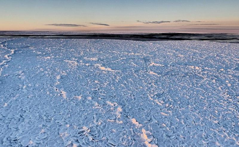 Waduh, Ada Batuan Kulit Naga di Antartika