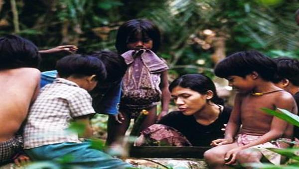 Suku Anak Dalam Jambi : Okezone News