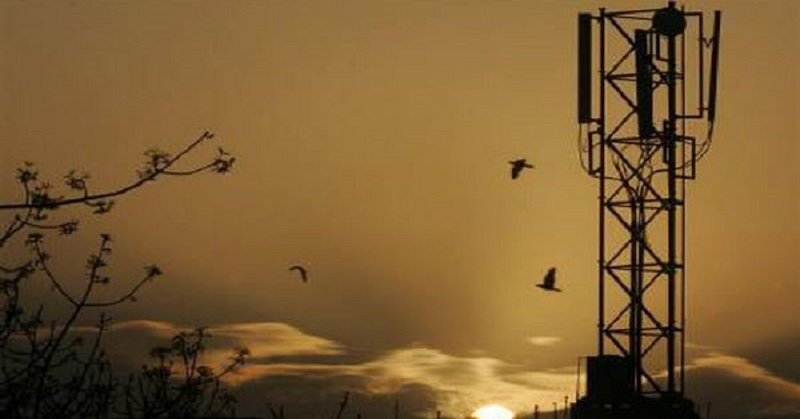 Pengamat: Lelang Frekuensi 2,1 GHz & 2,3 GHz Molor Bikin Operator Menderita