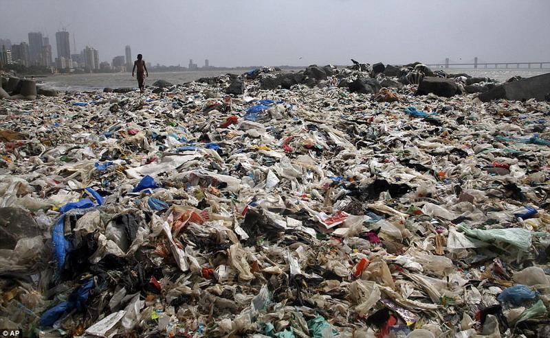 https: img.okezone.com content 2017 06 01 406 1705499 pantai-di-india-ini-kembali-indah-setelah-5-000-ton-sampah-dibuang-BVvKLMgqWI.jpg