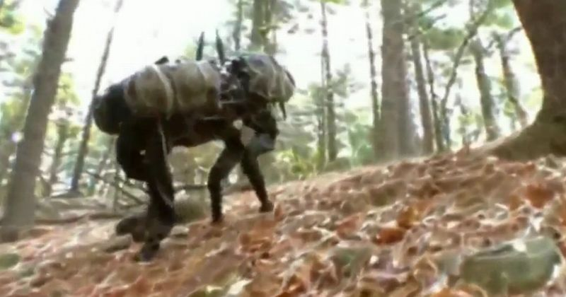 https: img.okezone.com content 2017 06 15 56 1717271 robot-ini-bisa-bantu-untuk-misi-penyelamatan-cyUuvMW8DS.jpg