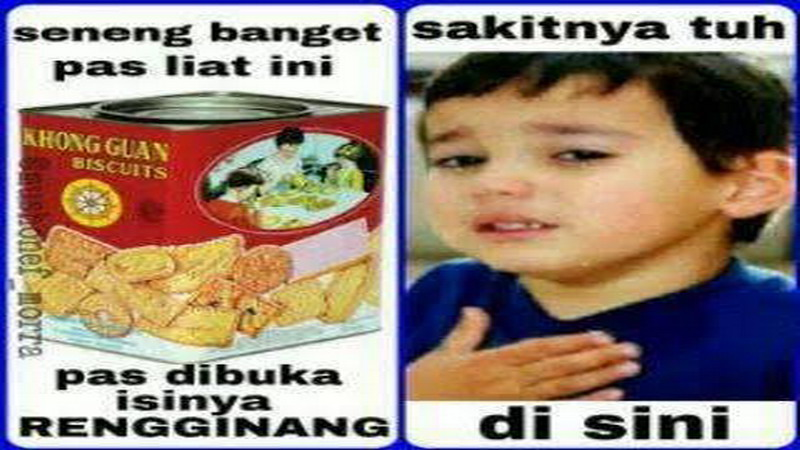 95 Foto Gambar Meme Gokil Ngakak Paling Keren