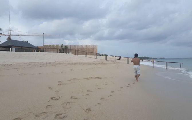 Awas! Ubur-Ubur Beracun Mengintai di Pantai Selatan