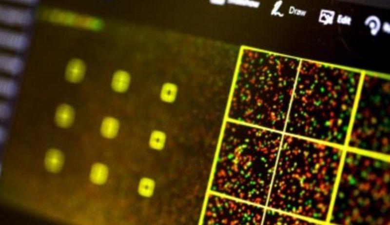 Ada-Ada Saja! Retas Komputer Kini Bisa Menggunakan DNA, Bagaimana Bisa?