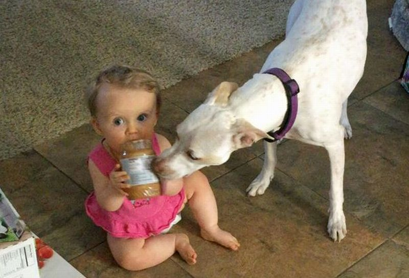Aria Lussie dan anjingnya, Ivy. (Foto: Caters News Agency)