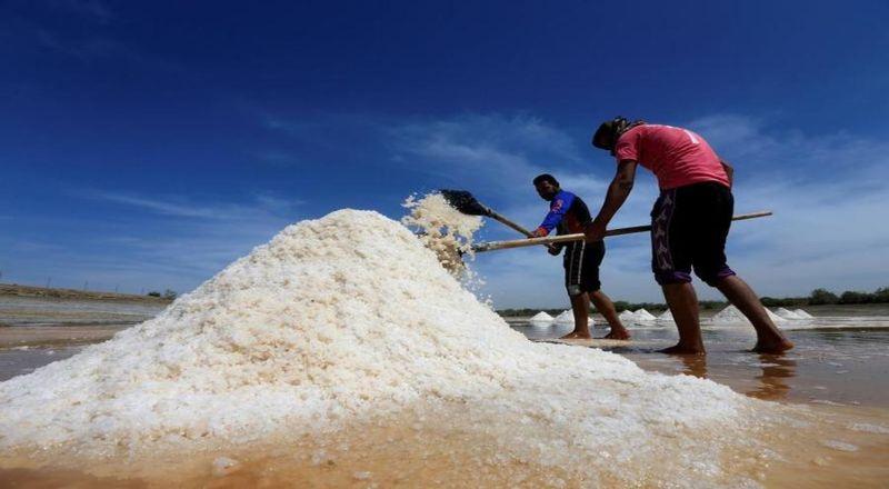 Ambil Lahan 3.700 Ha, PT Garam Diminta Bahas Secara Business to Business