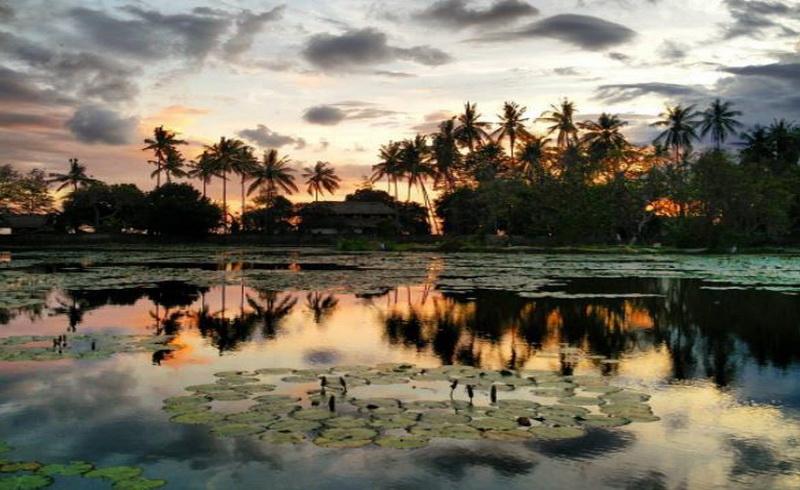 https: img.okezone.com content 2017 09 04 406 1768702 kemunculan-penyu-misterius-magnet-baru-kolam-wisata-candidasa-pulau-dewata-jVCi1GmmIl.JPG