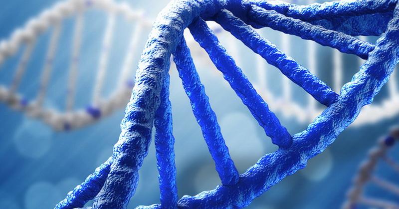 Temuan 'DNA Gelap' Ungkap Evolusi Makhluk Hidup, Ini Penjelasannya!
