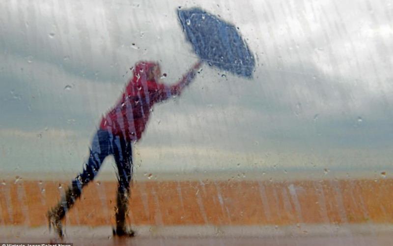 https: img.okezone.com content 2017 10 06 406 1790180 okezone-week-end-tips-berwisata-aman-selama-musim-hujan-jangan-sekali-kali-berteduh-di-bawah-pohon-o0g5BAa7fz.jpg