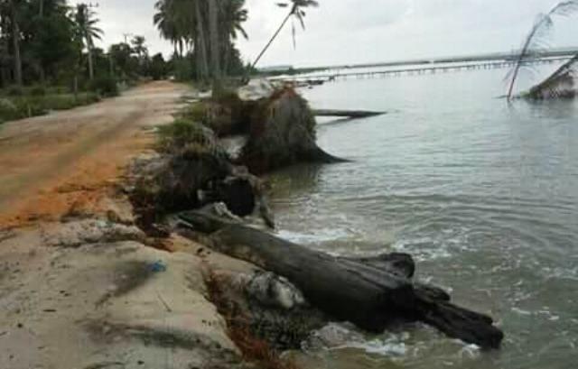 https: img.okezone.com content 2017 10 10 340 1792518 abrasi-pantai-keraya-kian-parah-jalan-penghubung-antar-desa-ini-terancam-putus-IhOpVLKLJX.jpeg