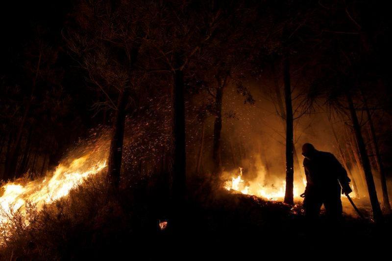 https: img.okezone.com content 2017 10 18 18 1797513 bayi-1-bulan-jadi-korban-kebakaran-di-portugal-lebih-dari-40-orang-tewas-B5LoIF0CDr.jpg