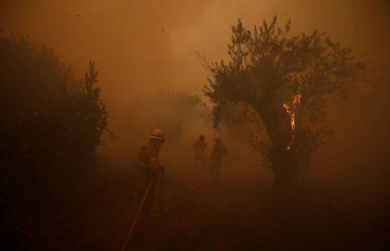 https: img.okezone.com content 2017 10 22 18 1800204 pemerintah-tak-kunjung-tangani-kebakaran-dengan-baik-ribuan-warga-portugal-gelar-unjuk-rasa-Ow37UYVgmp.jpg
