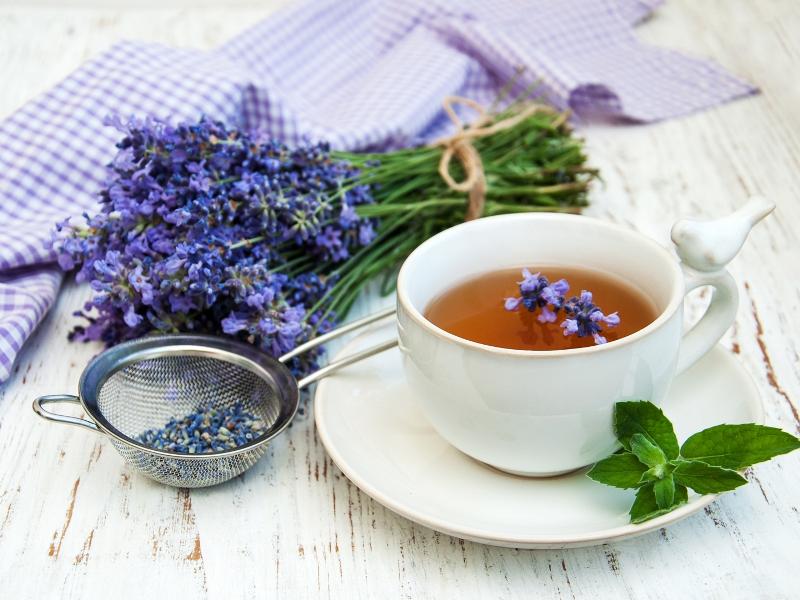 https: img.okezone.com content 2017 11 24 481 1820174 keampuhan-5-tanaman-herbal-untuk-mengobati-flek-paru-paru-DS6lW4a7Z0.jpg