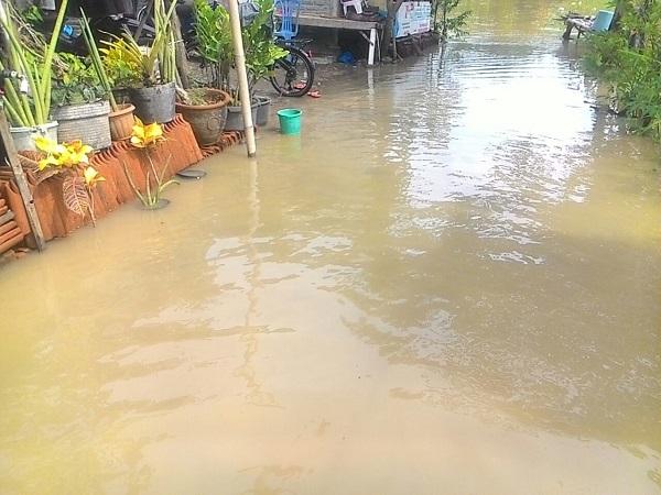 https: img.okezone.com content 2017 11 25 525 1820446 sungai-cibuaya-di-indramayu-meluap-dua-desa-terendam-HxaMRwY5DQ.jpg