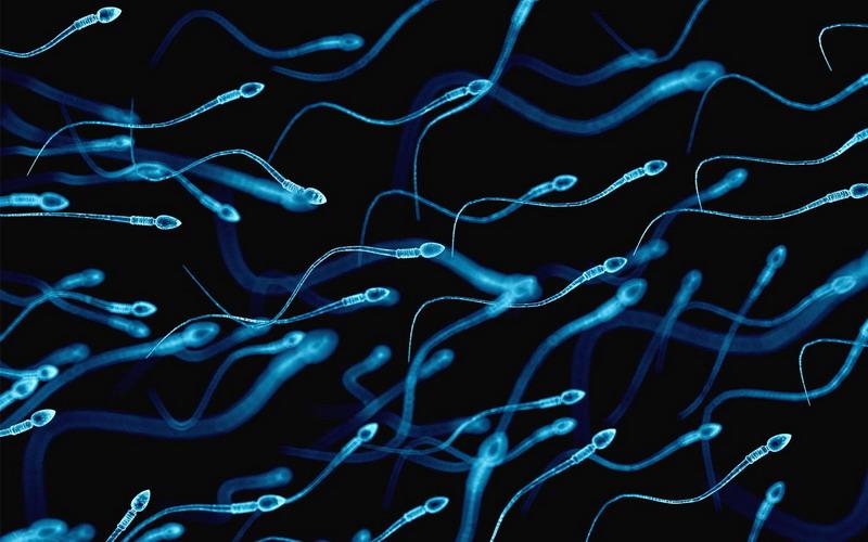 Istri Telan Sperma Suami Bagaimana Hukumnya Dalam Islam Okezone Lifestyle