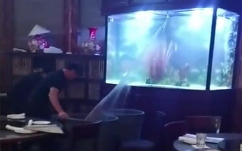 https: img.okezone.com content 2017 12 29 298 1837365 menegangkan-akuarium-raksasa-pecah-pengunjung-restoran-seafood-ini-histeris-iAnoaM0h9T.jpg