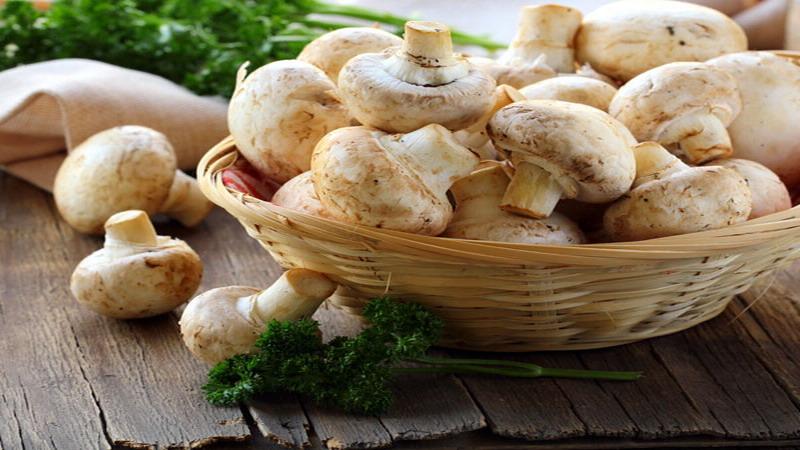 https: img.okezone.com content 2017 12 29 481 1837361 wajib-tahu-7-manfaat-sehat-makan-jamur-putih-selain-cegah-kanker-a4IlON48Nj.jpg