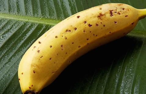 https: img.okezone.com content 2018 01 04 18 1840158 jepang-hasilkan-buah-pisang-yang-kulitnya-bisa-dimakan-LayDhinF3y.png