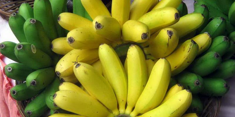 https: img.okezone.com content 2018 01 05 298 1840736 ketika-nyeri-saat-haid-atasi-dengan-pisang-juga-6-makanan-lainnya-ViIoqGMApt.jpg