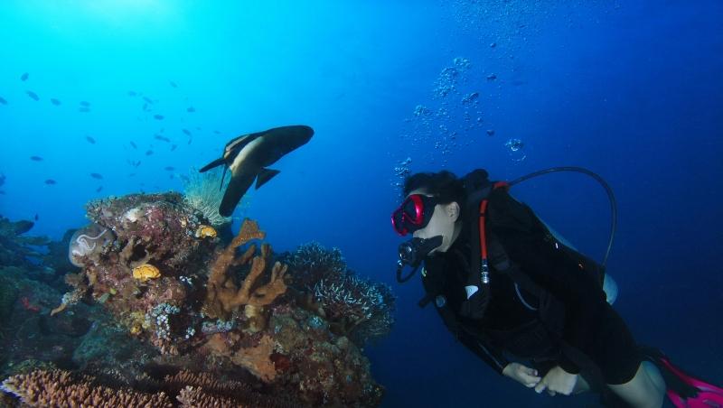 https: img.okezone.com content 2018 01 08 406 1841846 pesona-bawah-laut-pantai-malalayang-tidak-kalah-menawan-dengan-bunaken-RsYfSBeWKV.jpg
